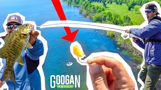 Googans FISHING with CHEESE Curds! (Clear water BASS)