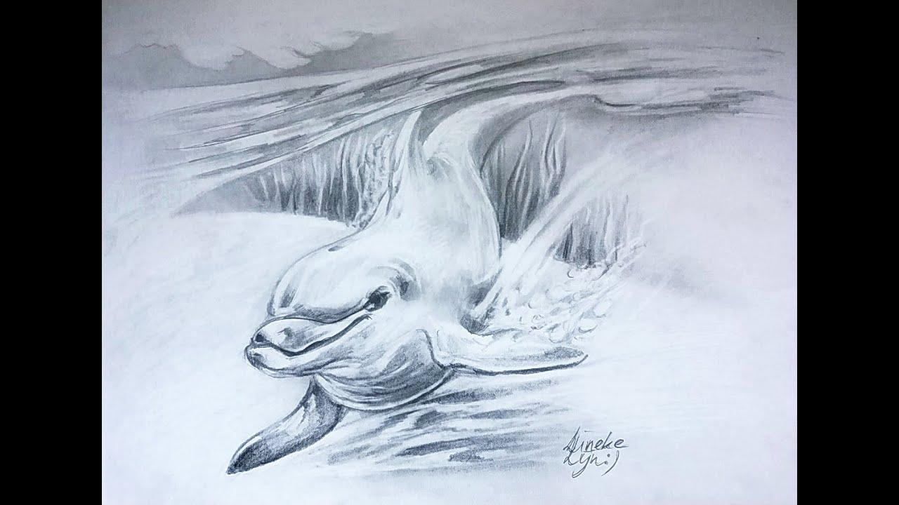 Zwemmende Dolfijn Tekenen Met Grafiet Potlood
