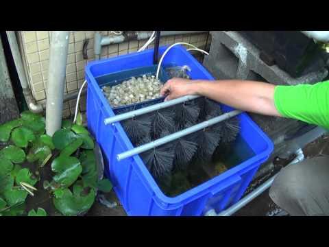 《魚菜共生資材》K1沉澱硝化槽升級版pa-271-1 洽購 0921104500 有為農園 Aquaponics K1 filter upgrade  Homemade Pond Filter