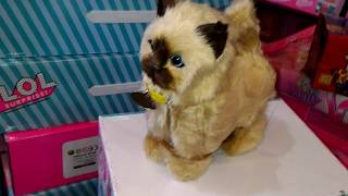 Интерактивная игрушка кошка котенок ходит go go