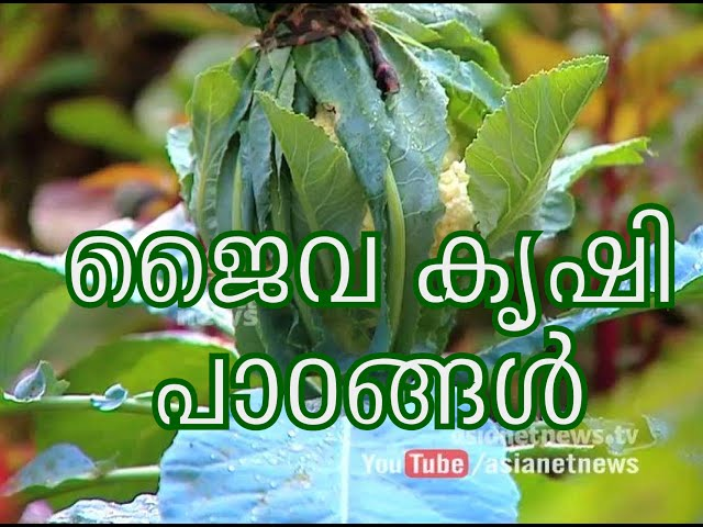 Reghu Mash's organic farming | ജൈവ കൃഷി പാഠങ്ങള്