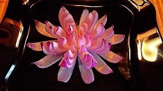 Цветок из лука! Flower of onion! Украшения из овощей! Decoration of vegetables!