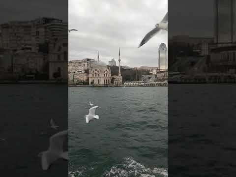 eminonu cruise-bosphorus-cold-freezing