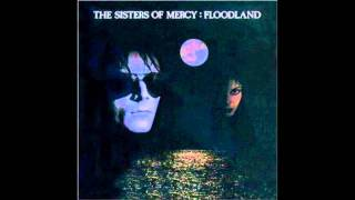 The Sisters of Mercy - Driven Like The Snow (Floodland album)