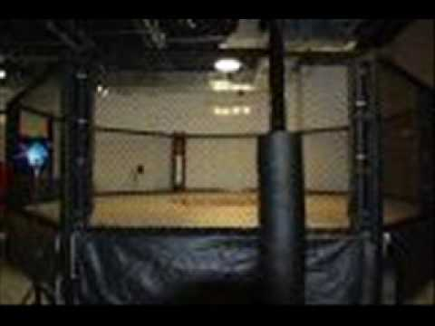 MC STATUS - Throw Down (fight song for mma): Explicit