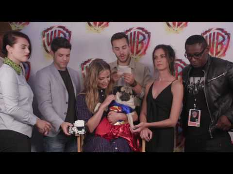 Doug the Pug s SUPERGIRL at ComicCon 2017 WBSDCC