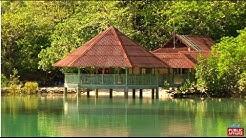 Discover Danjugan Island with Biyaherong Drew Arellano