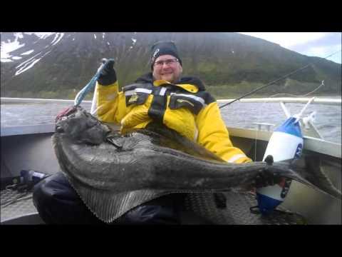Ksfjord 2014 h lleflundra youtube for Elias v fishing