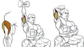 Разгибания руки с гантелью: упражнение на трицепс(У нас Вы можете заказать индивидуальную программу тренировок по интернету: http://atletizm.com.ua/personalnyj-trener/uslugi ..., 2012-09-18T08:14:16.000Z)