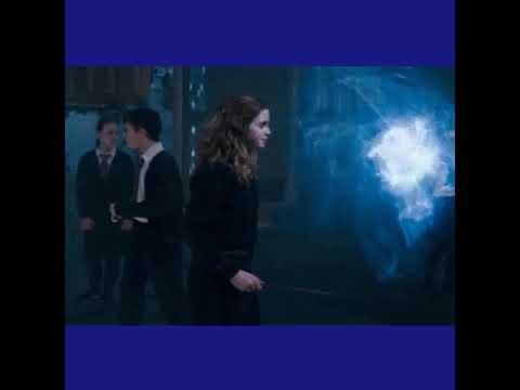 Hermiones patonus