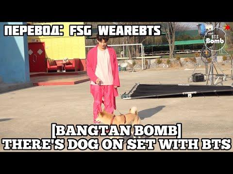 [Rus Sub] [Рус Суб] [BANGTAN BOMB] There's a Dog on the Set with BTS! - BTS (방탄소년단)