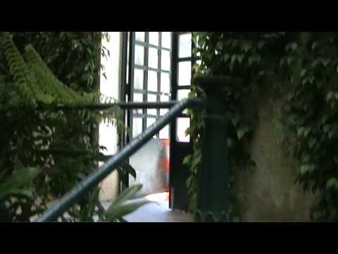 Invernadero del Jardín Botánico de Madrid