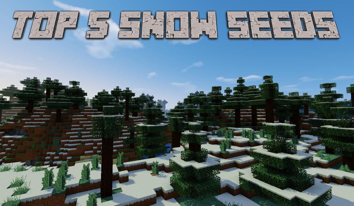 Top 9 Best Snow, Ice Plains Minecraft Seeds 9.9.9, 9.9, 9.9.9, 9.9.90 [2096]