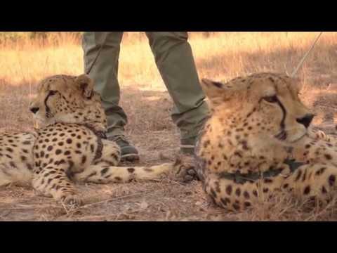 Road Trip Zambia Episode 1