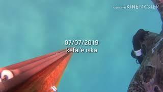 07.Temmuz.2019 Aksu Kefal'e ıska