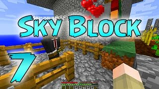 Minecraft: SkyBlock Survival Episode 7 - Sky Island Expansion!