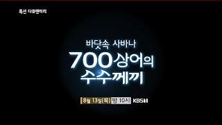 [예고] 바닷속 사바나 700상어의 수수께끼 [특선 다큐멘터리]