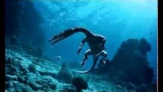 Морские динозавры 3D: Путешествие в доисторический мир(Вы перенесётесь на 200 млн. лет назад, в невероятный мир далеких времён. Незабываемое и опасное путешествие..., 2010-09-25T05:38:11.000Z)