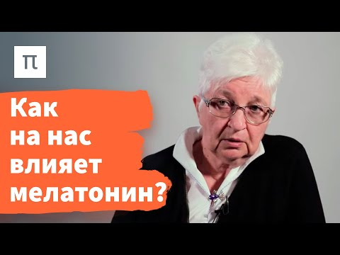Эпифиз — Ольга Смирнова / ПостНаука