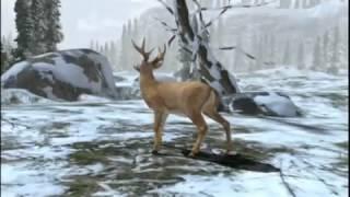 Deer Hunter Reloaded Симулятор охоты для Android
