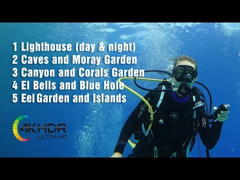 Best Dive Sites in Dahab (Egypt), 4k video