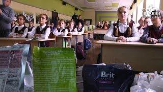 Ученики нижегородского лицея №40 помогли фонду защиты животных «Сострадание»