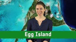 Earth from Space: Egg Island
