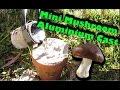 🍄 The Worlds Smallest Mushroom Casting - Molten Aluminium 🍄