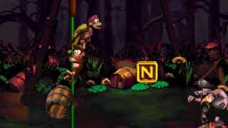 Donkey Kong Country 2 - 11 - leaf