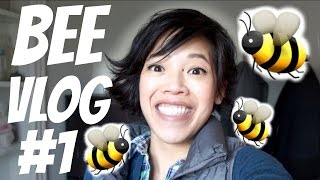 BEE VLOG #1 | setting up frames & hive, making syrup