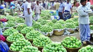 বাংলাদেশে এবার আমের দর মাত্র ২ টাকা কেজি mango prices dropped in bangladesh