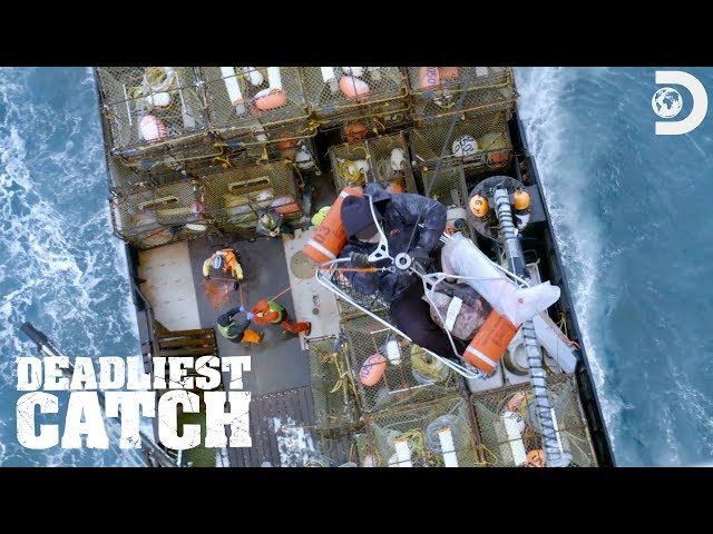 Coast Guard Rescues Injured Deckhand | Deadliest Catch