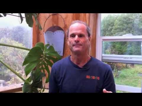 Is a 100% Fruit Diet Healthy - Dr. Doug Graham