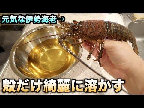 新発見!!伊勢海老を酢に3日間漬けて殻だけ溶かして中身を取り出す!!