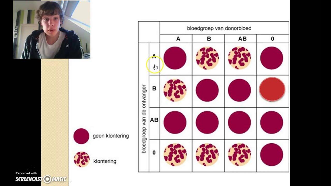 uitleg bloedgroepen