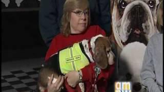 Cascade Beagle Rescue & Regal Cinemas (Hotel For Dogs)