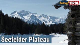 Seefelder Plateau im Winter