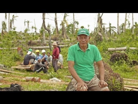 Coconut farming in the Philippines
