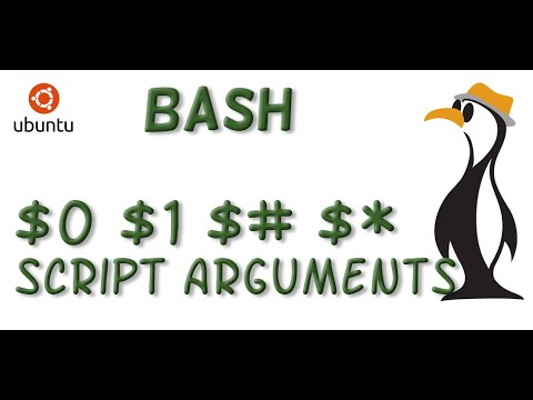 how to use bash script