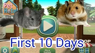 Pet Hotel My animal boarding | First 10 Days | Gameplay