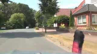 Wietzendorf Landkreis Heidekreis NiederSachsen 27.7.2013