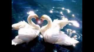Peter Maffay ♥ இڿڰۣ-ڰۣ— ♥ wer liebt ♥ இڿڰۣ-ڰۣ— ♥ Extra Tour 2013