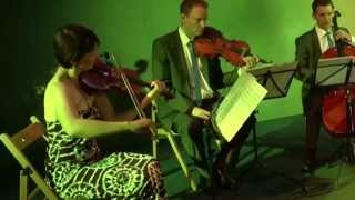 Rolling in the Deep, Adele - Capital String Quartet