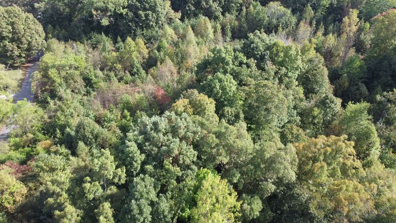 11.5 Acres of Land - Bybee, TN - Drone photo going from right to left at front of property