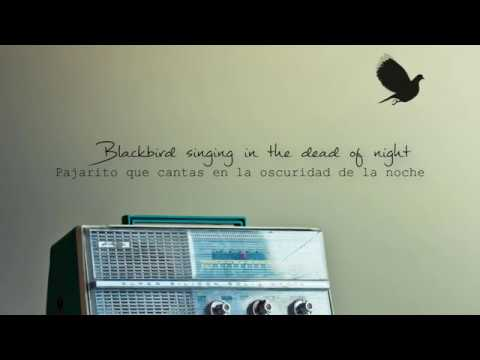 The Beatles Blackbird Subtitulada Español Inglés