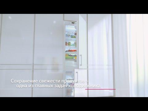 Встраиваемые холодильники LG
