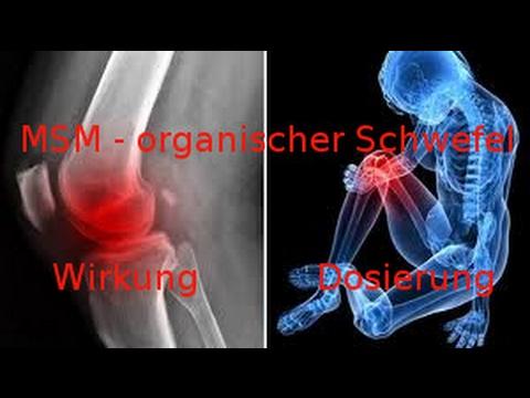 MSM - organischer Schwefel * Wirkung * Dosierung * Vorkommen in der Natur *