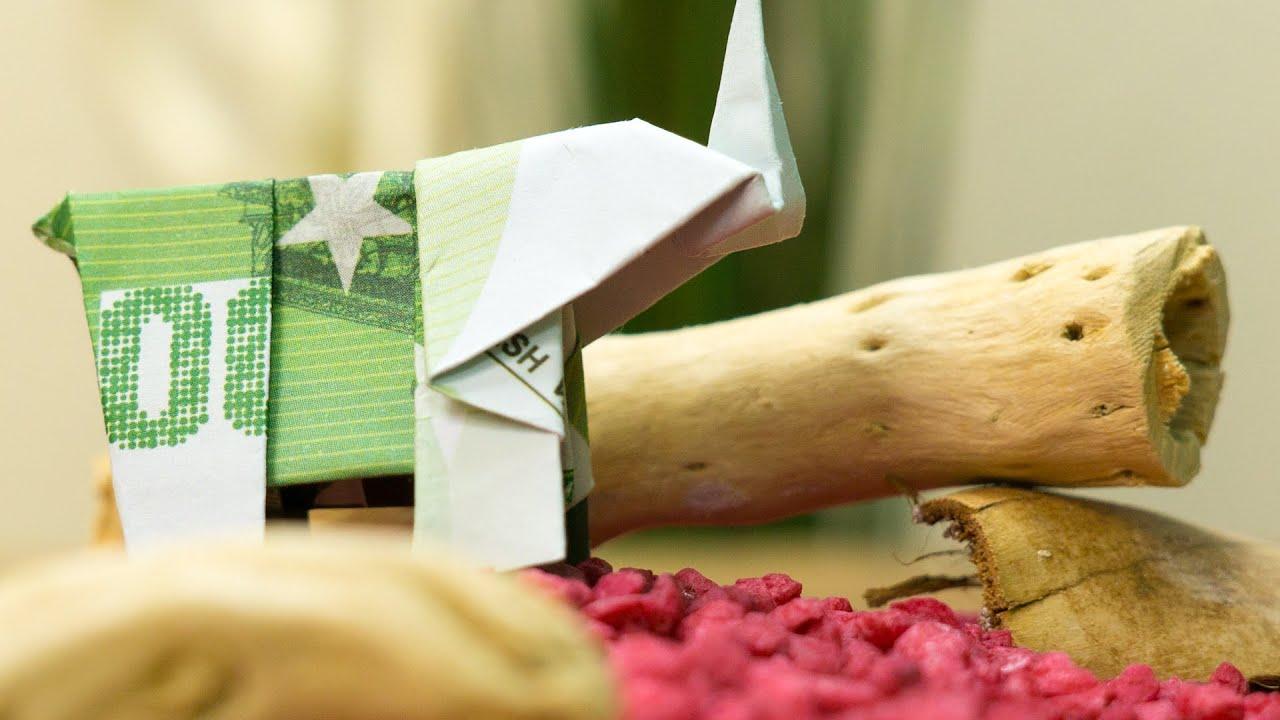 Elefant Falten Geldschein Origami Geldgeschenk Idee Youtube