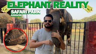 ELEPHANT REALITY IN SAFARI PARK KARACHI | AZLAN SHAH