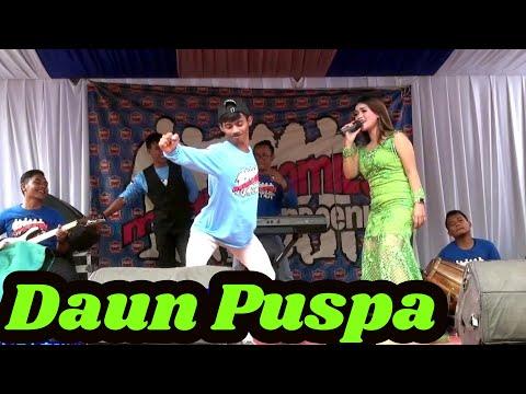 Download Daun Puspa Mp4 baru